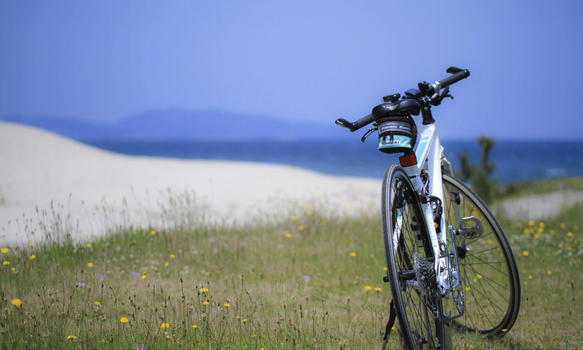 自転車 × イロドリプラス
